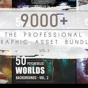 The Professional Graphic Asset Bundle 3