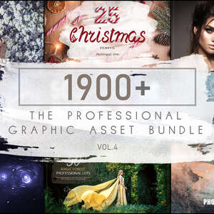 The Professional Graphic Asset Bundle 4